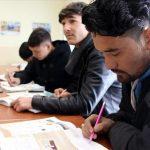 Translate Bahasa Afghanistan