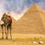 Translate Mesir