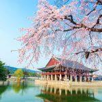 Translate Bahasa Indonesia ke Korea
