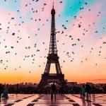 Translate Paris