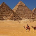 Translate Bahasa Egypt
