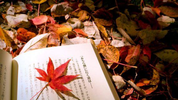 Translate Bahasa Kanji