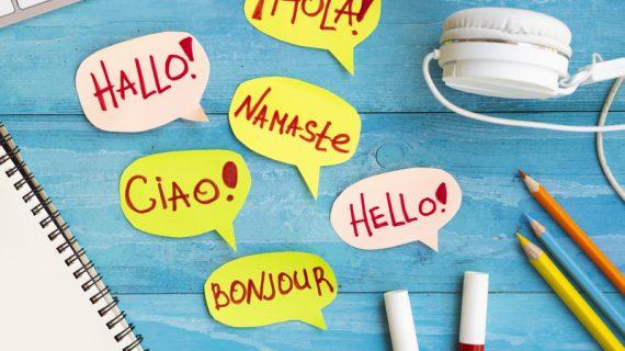 Translate Bahasa Pakai Foto