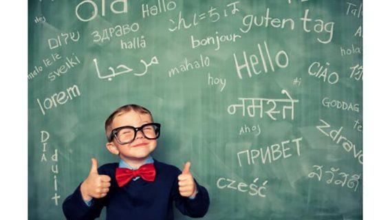 Translate Bahasa Paling Baik